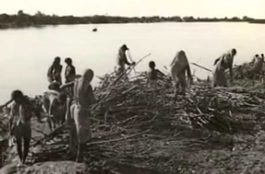 Revisiting the State-Sponsored Genocide of 17,000 Bengali Hindu Refugees in Marichjhapi